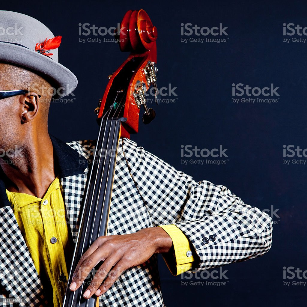 Contrabassist stock photo