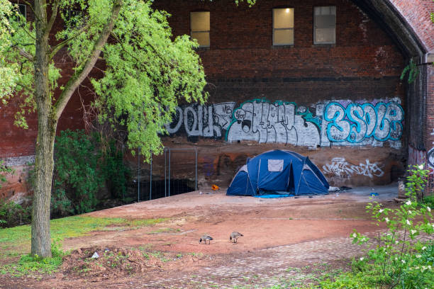 Contradictions of urban 21st century Manchester- two geese graze near a tent hosting homeless people by the canal in Casstlefield stock photo
