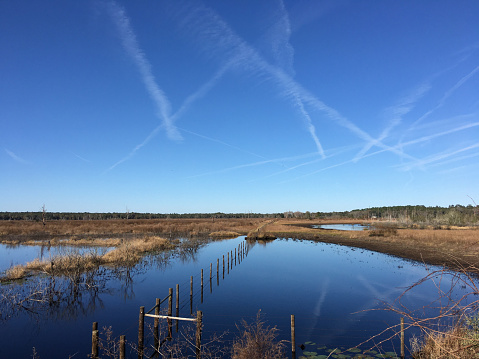 Clear day over flooded farm fields with standing water years after Hurricane Irma flooded the area in September 2017.  Photo taken in Melrose, Florida, along the Alachua/Clay county border on iPhone 6S Plus