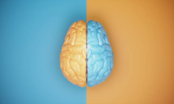 Contrast Brain Concept stock photo