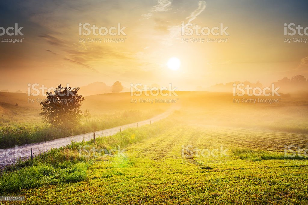 Contry Road Towards The Sun - Foggy Rolling Landscape royalty-free stock photo