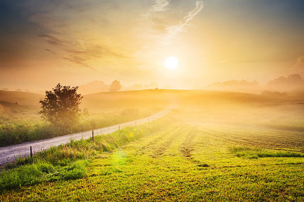 Contry Road Towards The Sun - Foggy Rolling Landscape stock photo