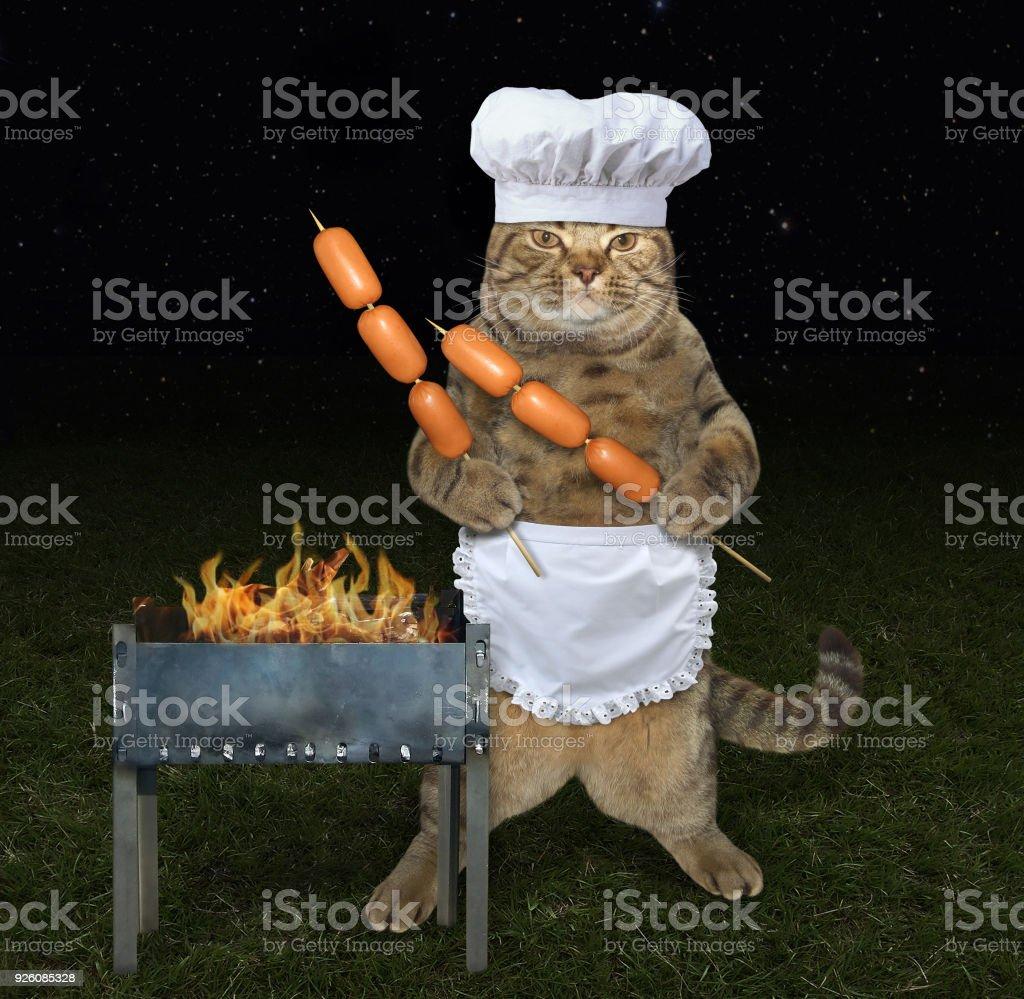 Chat cuisinier près un grill - Photo