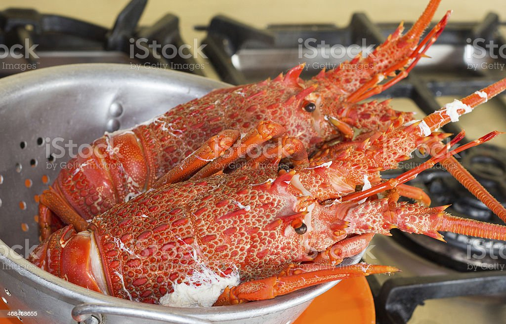 Cook Crayfish royalty-free stock photo