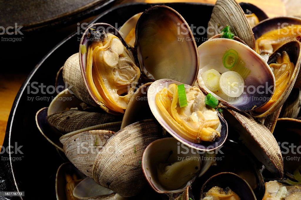 Cooked Clam stock photo