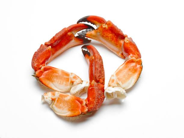 gekochte krabben bein - muscheln zubereiten stock-fotos und bilder