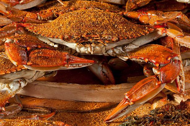 cooked crabs and old bay spices - blauwe zwemkrab stockfoto's en -beelden