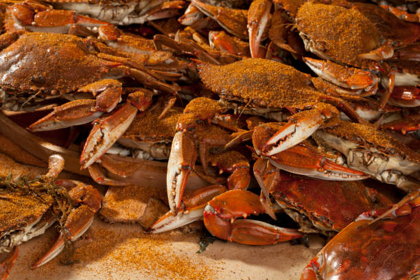 cooked crabs and old bay spices. - gestoomd stockfoto's en -beelden