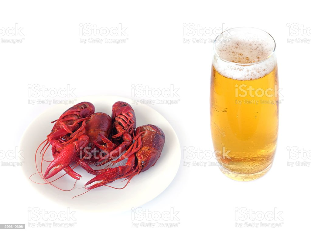 Cooked crayfish isolated on white royalty-free stock photo