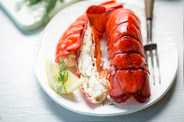 Cooked lobster tails with lemon & dill stock photo