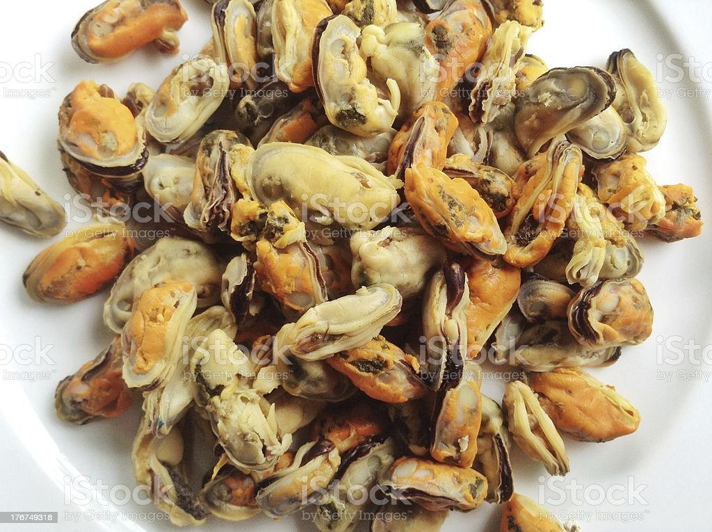 Cooked mussels royalty-free stock photo