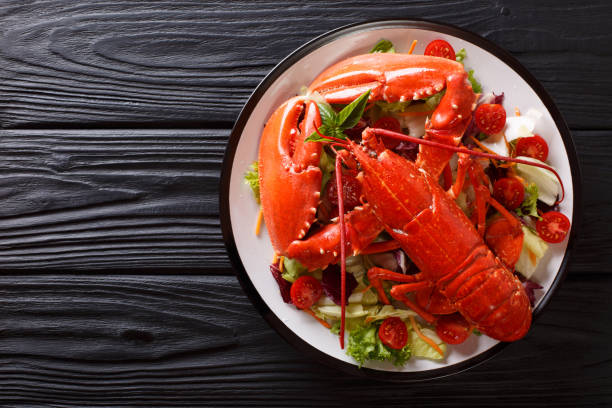 Cooked sea lobster with fresh vegetable salad on a plate close-up. Horizontal top view stock photo