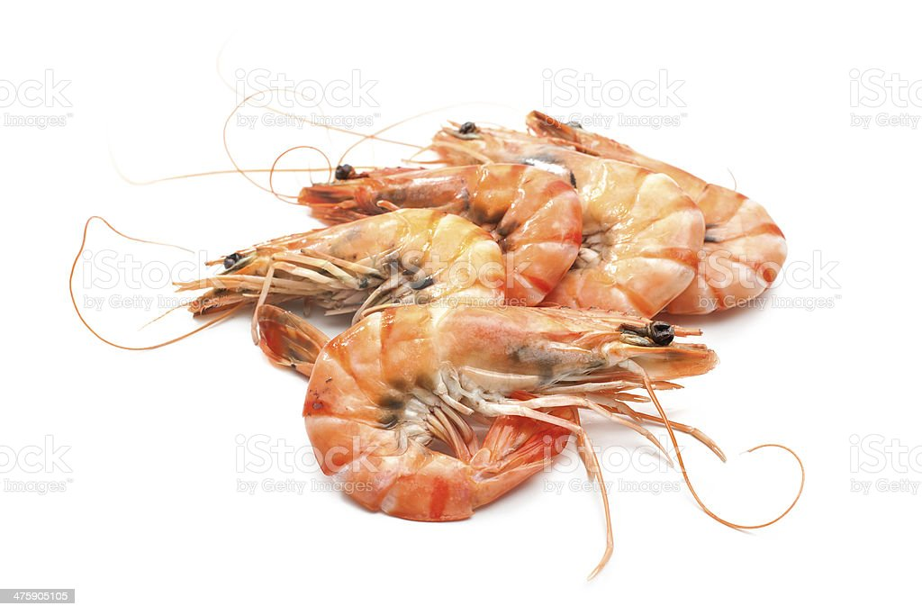 cooked tiger shrimps stock photo
