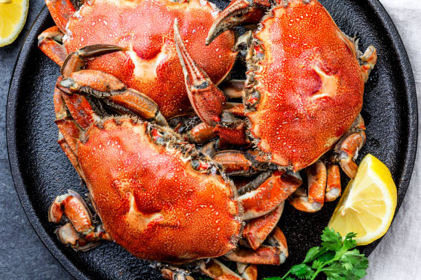 Cooked whole crabs on black plate served with white wine, black slate background, top view stock photo