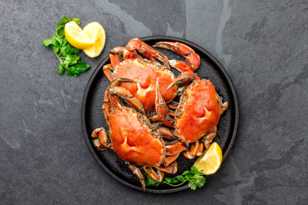 les crabes entiers cuits sur plaque noire accompagnées de vin blanc, fond ardoise noir, vue de dessus - crabe photos et images de collection