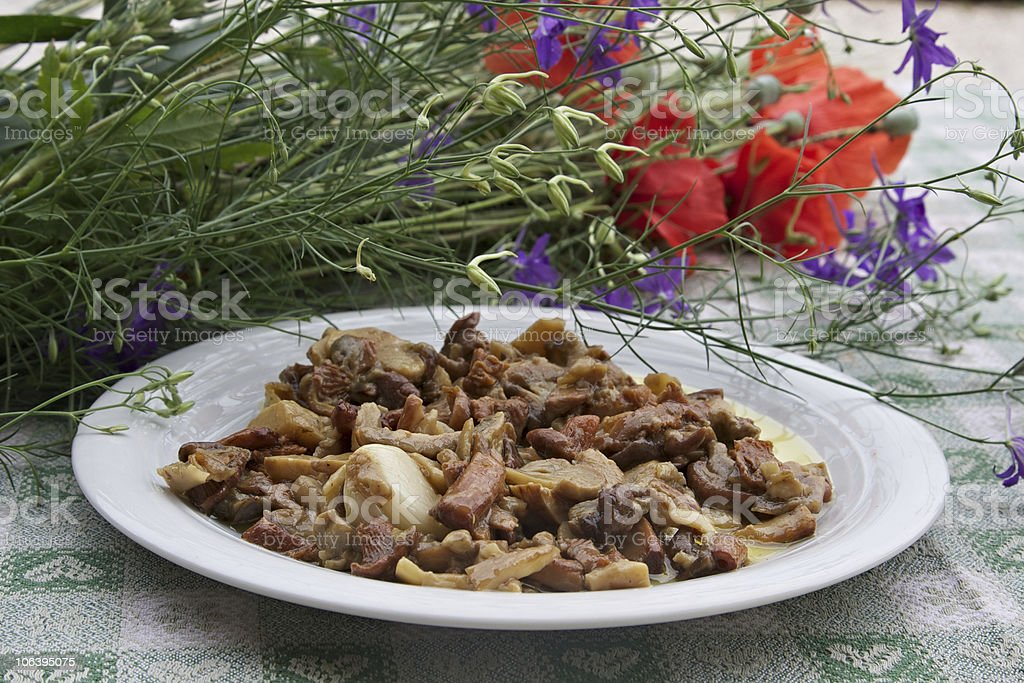 Cooked wild mushrooms in a dish royalty-free stock photo