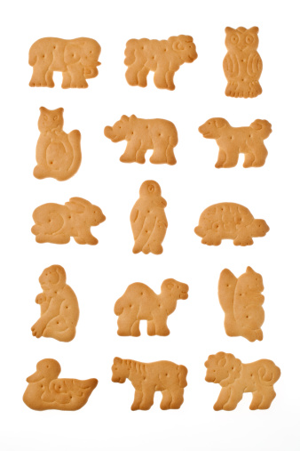 ZOO Cookie on a white background