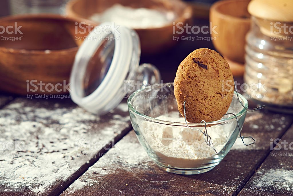 Cookie's leisure time royalty-free stock photo