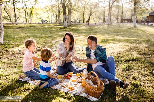 istock Cookies on a picnic! 1230073951