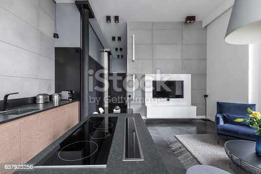 istock Cooking area in multifunctional apartment 637923256