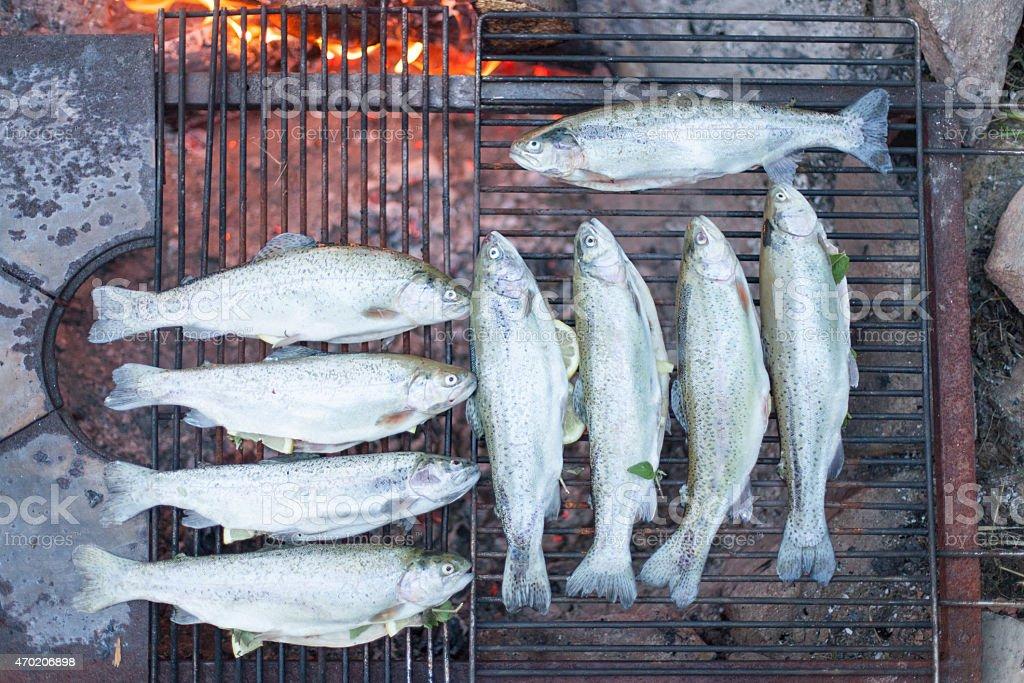 Kochen Fisch auf einem Lagerfeuer – Foto
