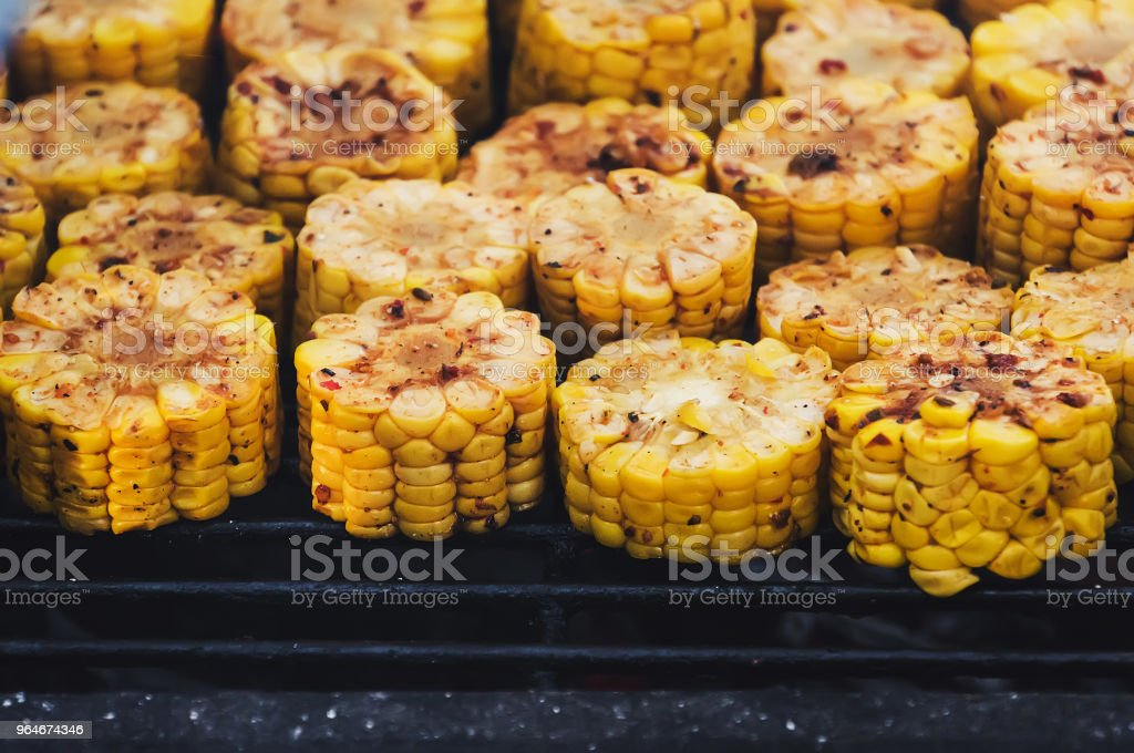 Cooking frame. Delicious food on the grill royalty-free stock photo