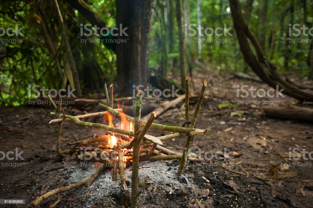 cooking in the Bolivian Amazon jungle, surviving stock photo