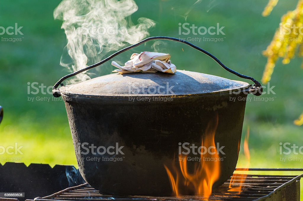 Cooking in the nature. Cauldron on fire in forest stock photo
