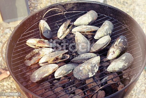 Freshly plucked green lip mussels cook slowly on the barbie.