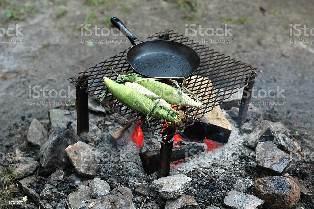 cooking on the campfire roasting corn stock photo