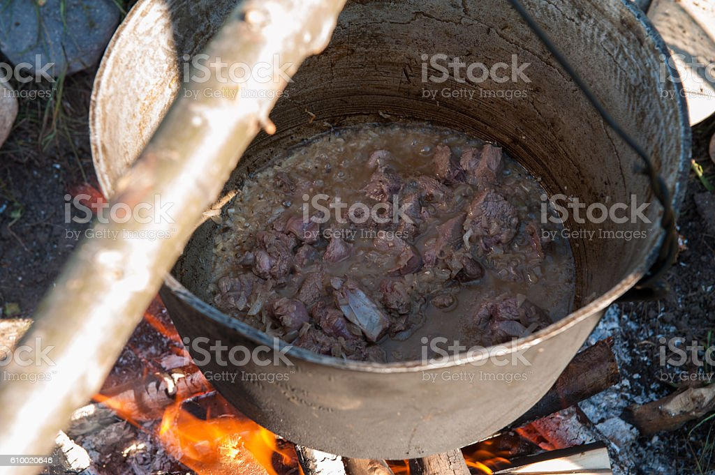 Cooking over a campfire stock photo