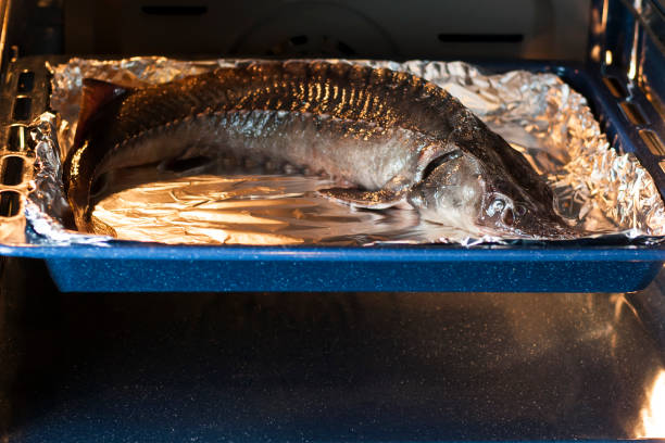 Cooking sturgeon in the oven. Acipenser ruthenus. Selective focus. stock photo
