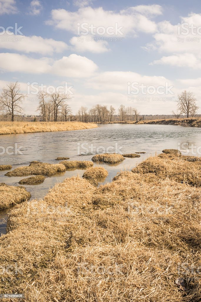 Cool Autumn Bow River Portrait Landscape photo libre de droits