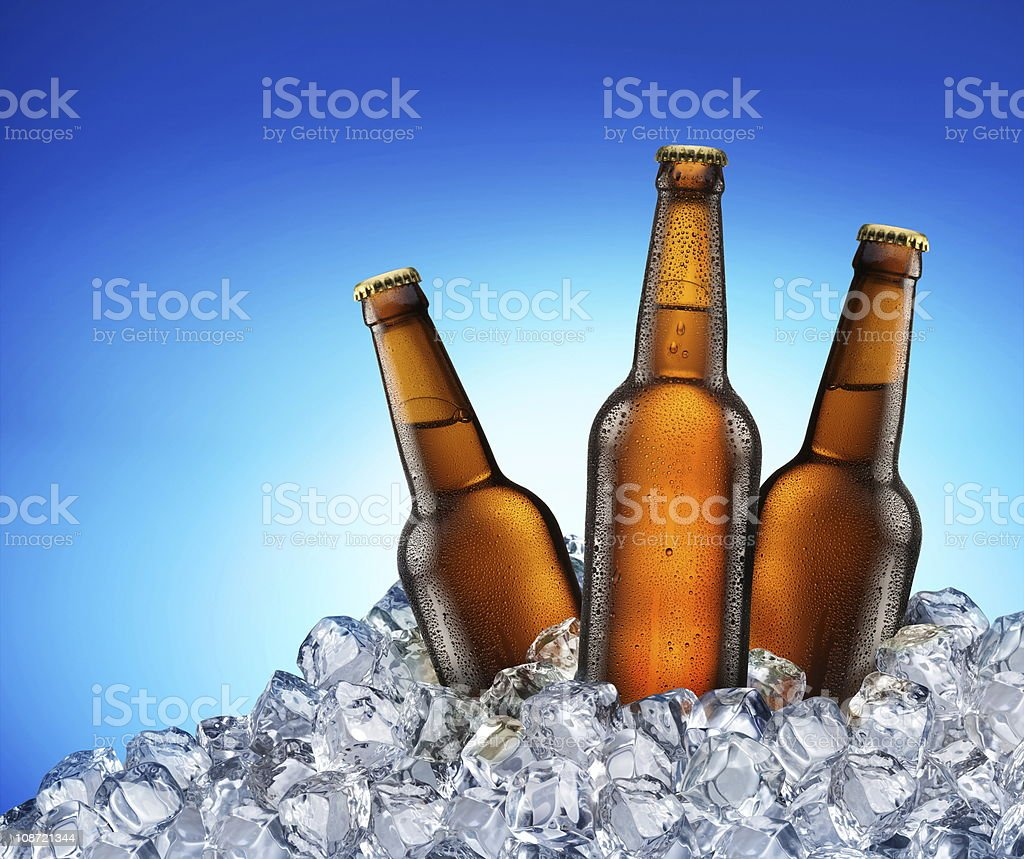 Cool beer bottles. royalty-free stock photo