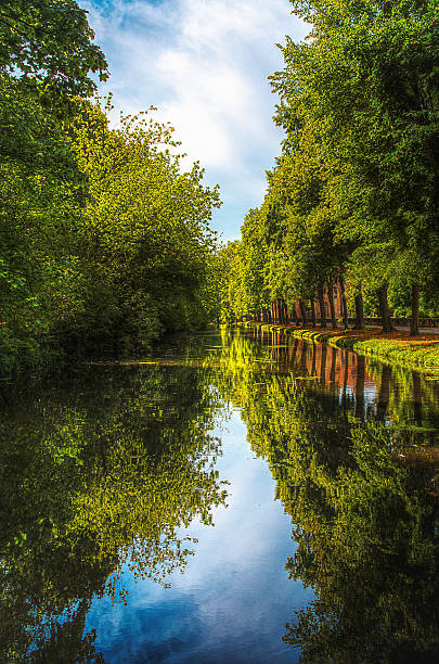 Cool moment in the heat of a summer heat wave Small shaded canal in the park of the Abbey of Royaumont val d'oise stock pictures, royalty-free photos & images
