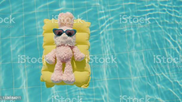 Cool rabbit in sun glasses glows on an inflatable mattress floats in picture id1126184011?b=1&k=6&m=1126184011&s=612x612&h=94d1dmf8y1ufcjchnhxsiq9 lwi8cet7fnvbdkotiy0=