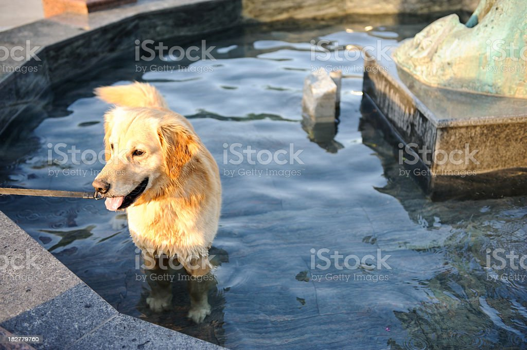 Cooling off stock photo
