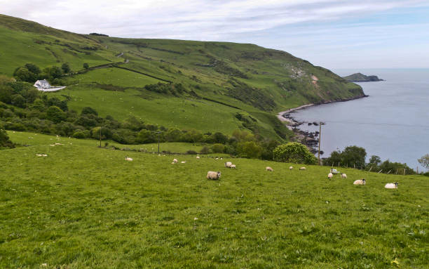 Coolraney, Loughan Bay, Torr Head stock photo