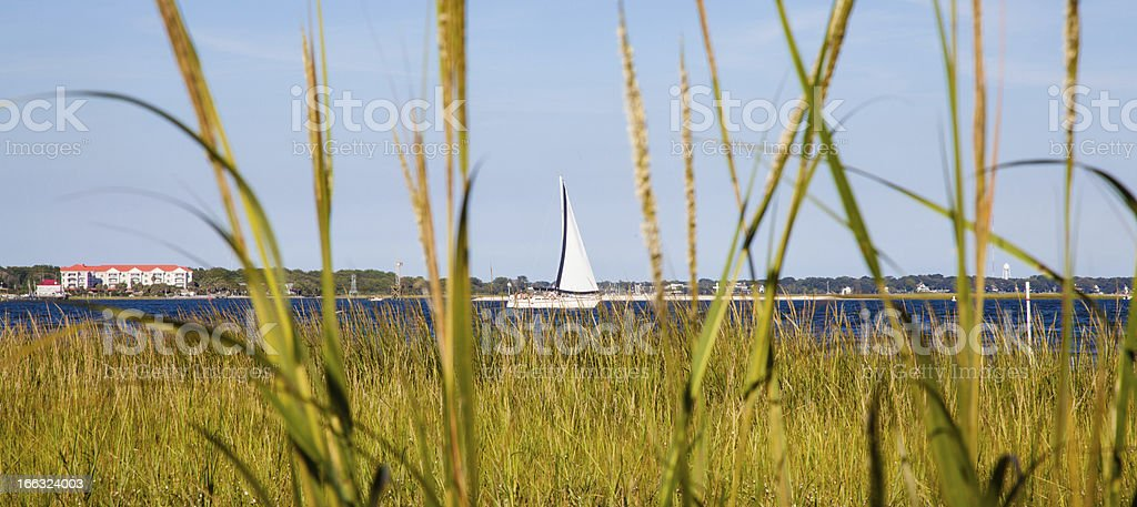 Cooper River Boat stock photo