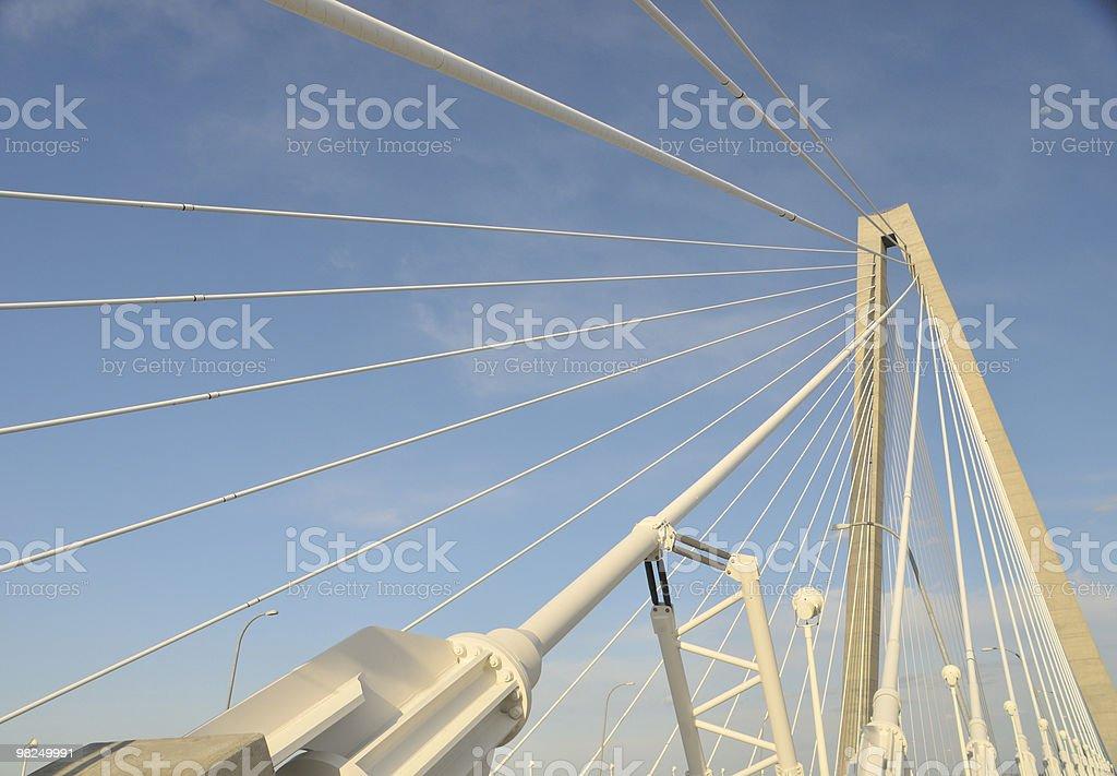 Cooper River Bridge, Charleston, South Carolina royalty-free stock photo