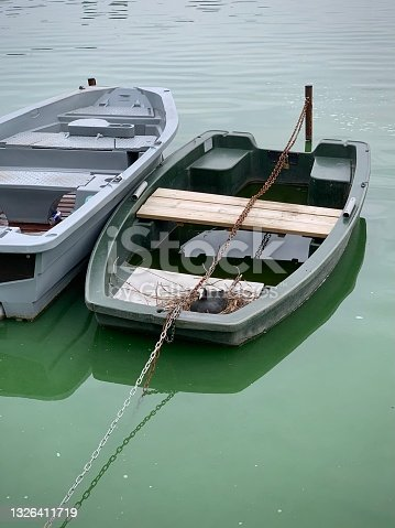istock A coot who had nested on a boat. 1326411719