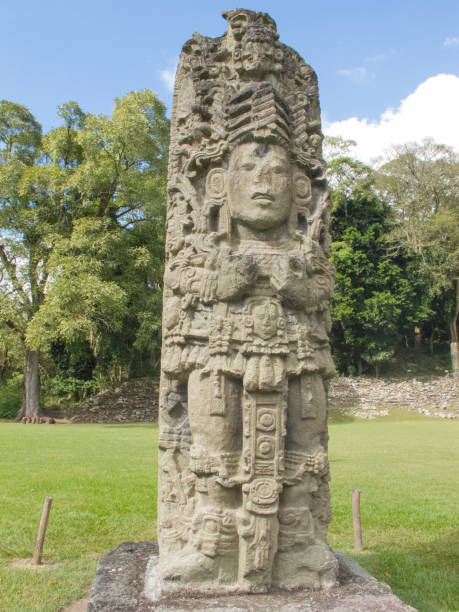 383 Mayan Stelae Stock Photos, Pictures & Royalty-Free Images - iStock