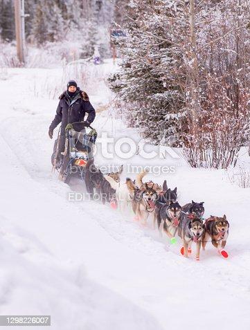 istock Copper Basin 300 -Dog Sled Race - Alaska 1298226007