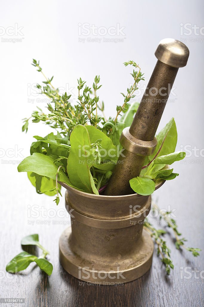 copper mortar with herbs stock photo