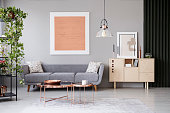 Copper tables in front of grey couch in modern apartment interior with painting and plant. Real photo