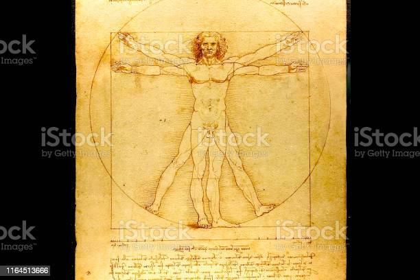 Copy of the picture of leonardo da vinci people in the circle picture id1164513666?b=1&k=6&m=1164513666&s=612x612&h=59v2a6t klujp2swodz8pis vm3nnk4a2wtlgmqv8n8=