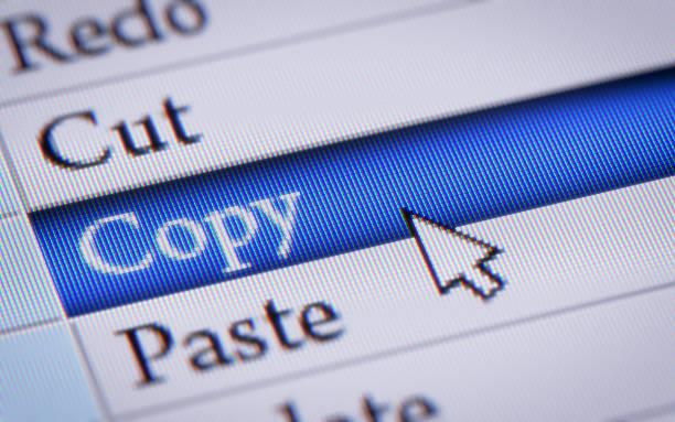 Copy - Photo