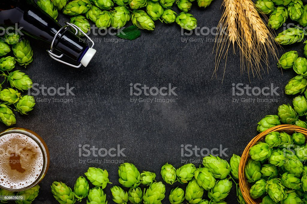 Copy Space Frame with Hops and Beer stock photo