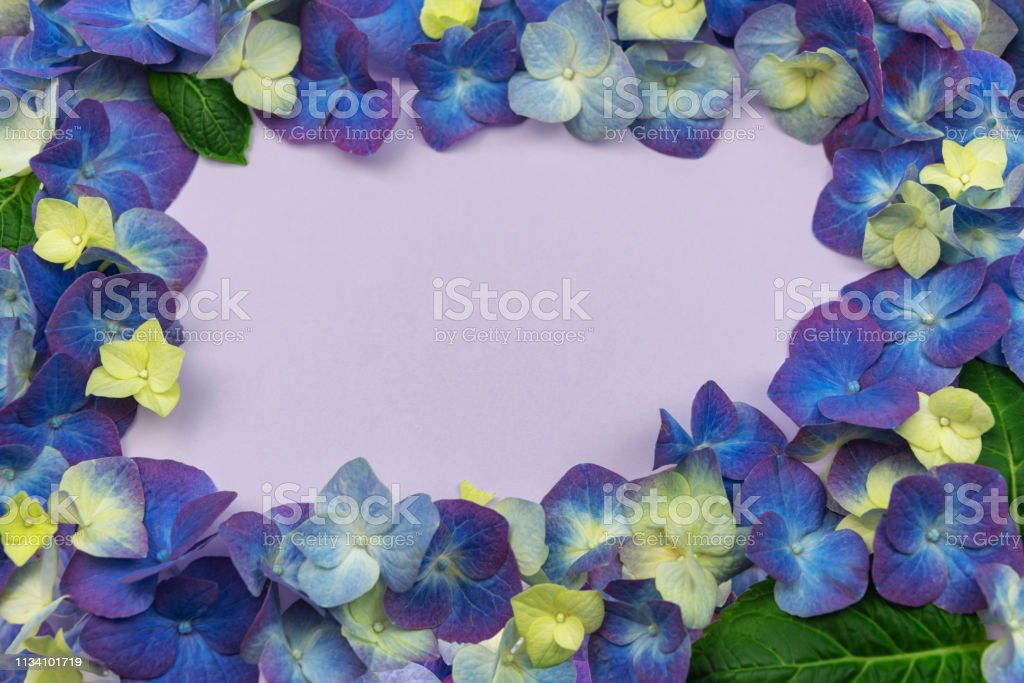 Also known as hortensia, a bouquet of the flower expresses the...