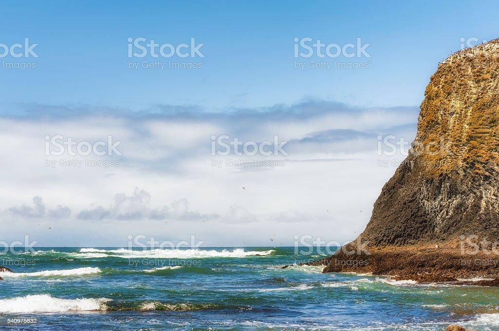 Copysapce Cobble Beach Newport, Oregon stock photo